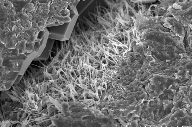 Homokkőről készült elektronmikrosztópos felvétel